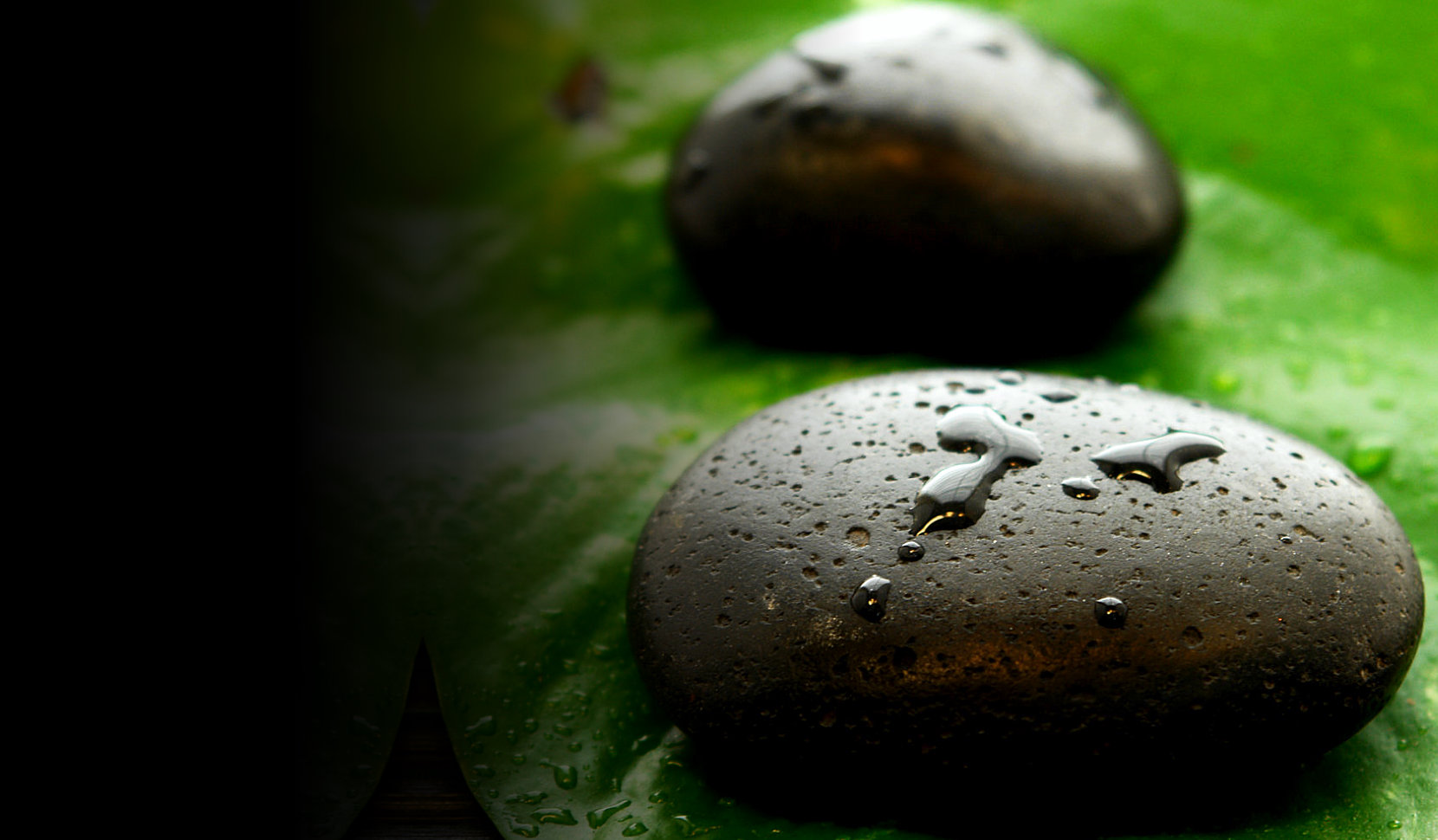 stones on top of a leaf